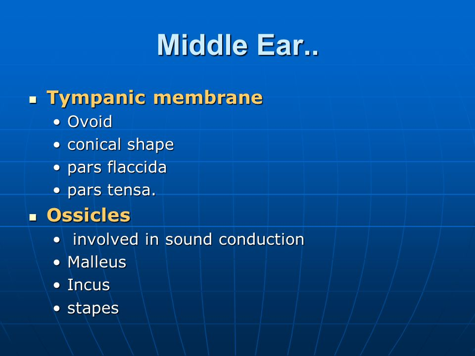 Middle Ear.. Tympanic membrane Ossicles Ovoid conical shape
