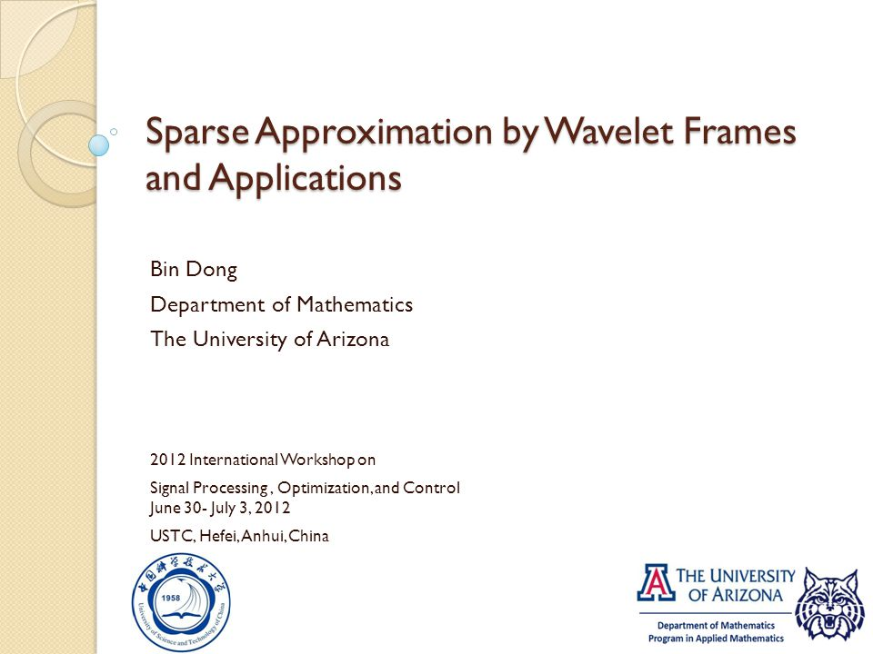 Sparse Approximation by Wavelet Frames and Applications