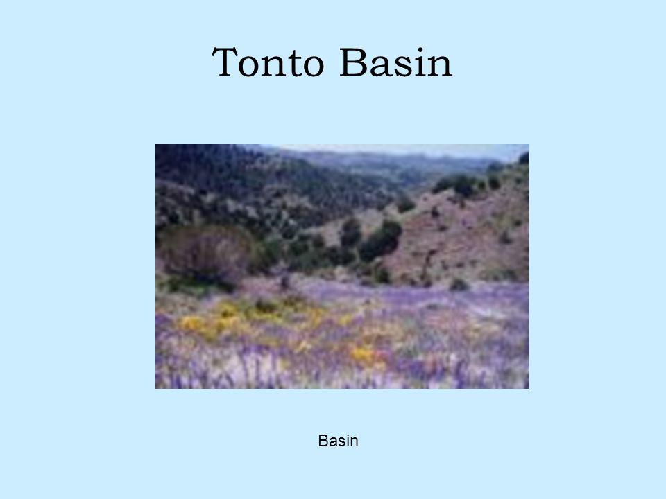 Tonto Basin Basin