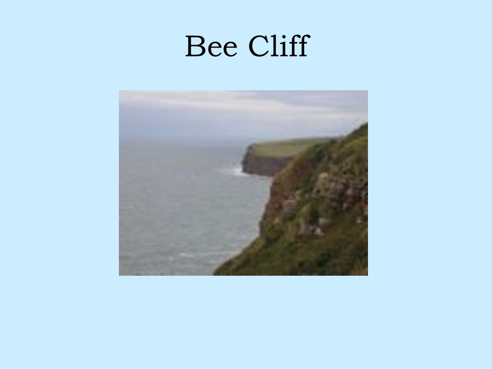Bee Cliff