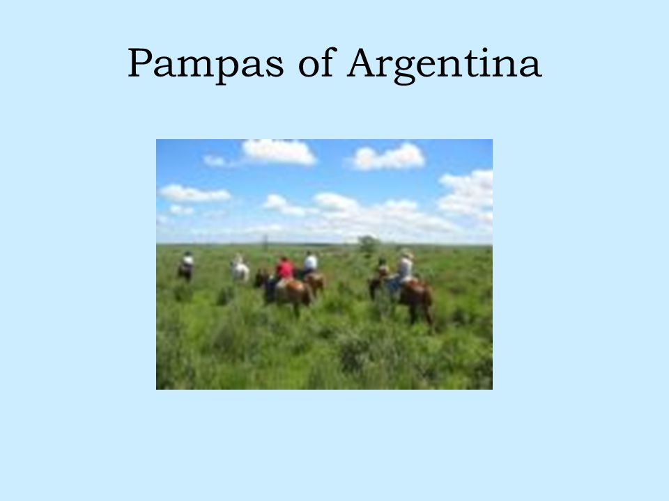 Pampas of Argentina
