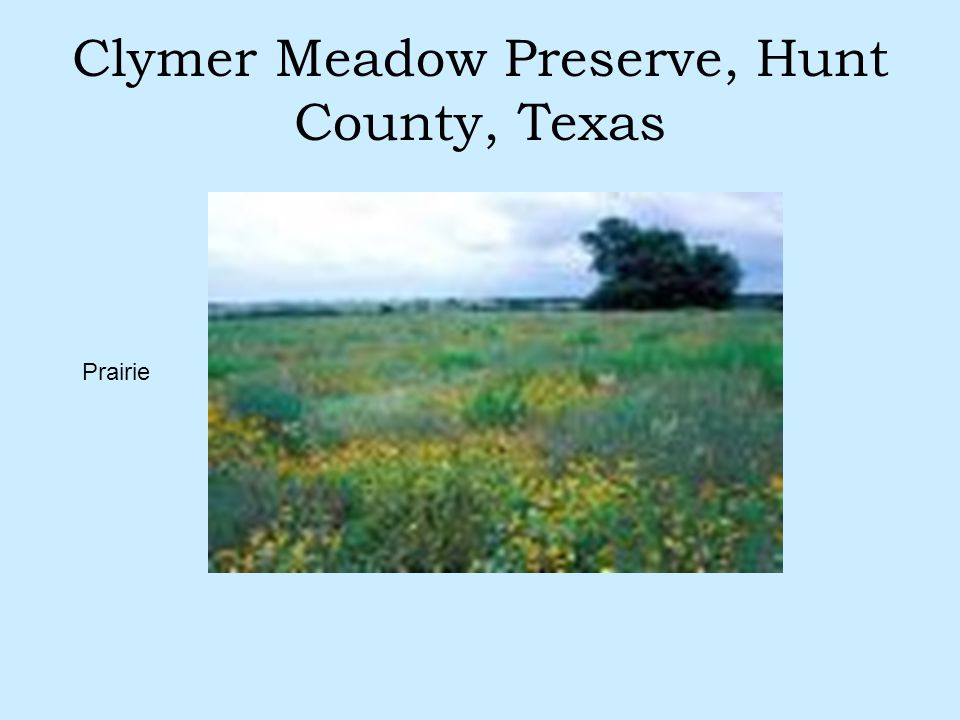 Clymer Meadow Preserve, Hunt County, Texas