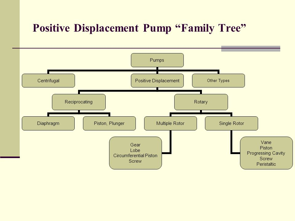 Positive Displacement Pump Family Tree