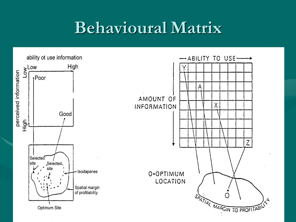 Behavioural Matrix