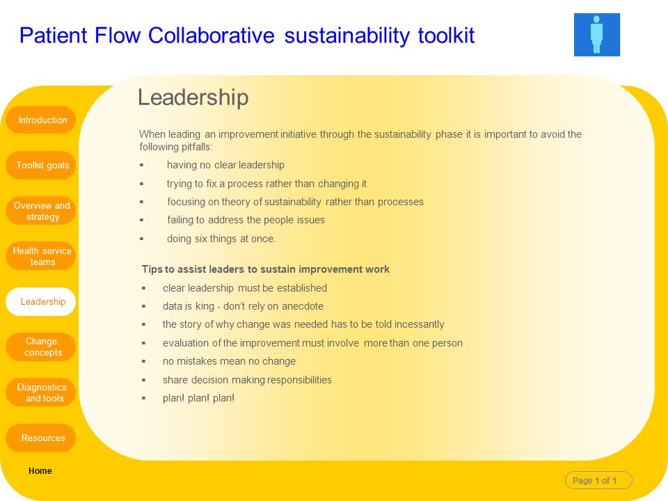 Leadership Introduction. When leading an improvement initiative through the sustainability phase it is important to avoid the following pitfalls: