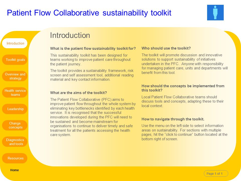 Introduction What is the patient flow sustainability toolkit for