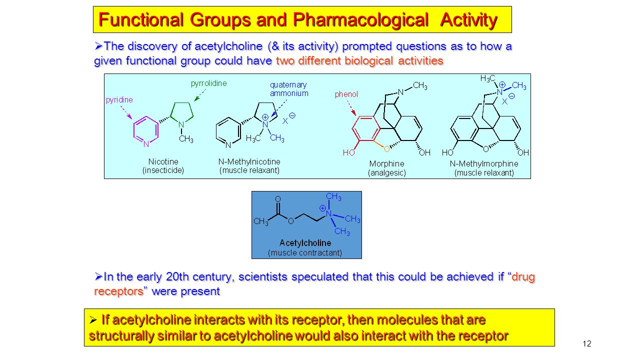 Functional Groups and Pharmacological Activity