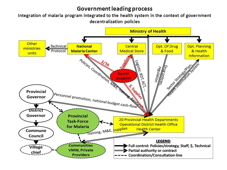 Government leading process