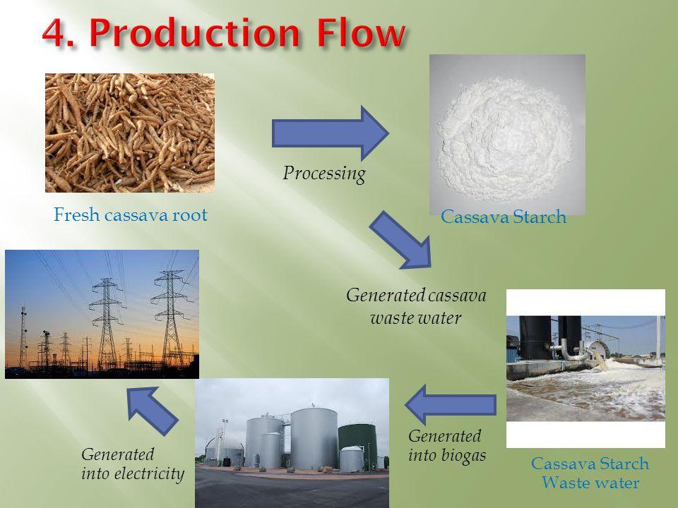 4. Production Flow Processing Fresh cassava root Cassava Starch