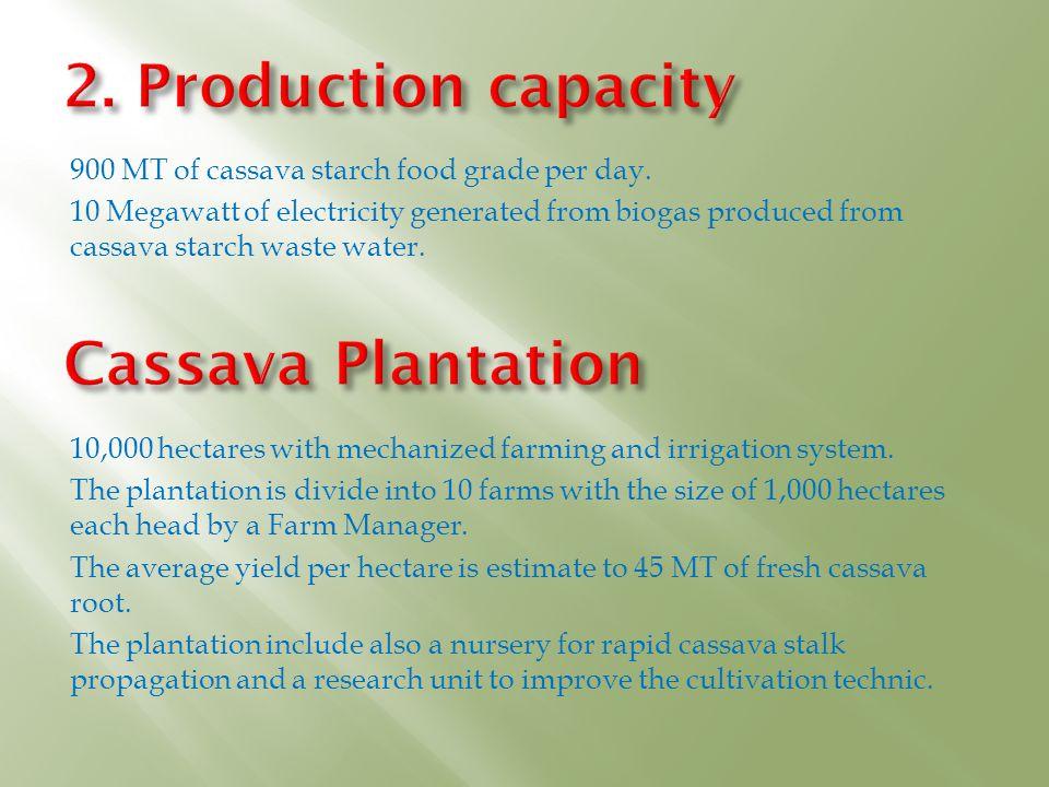 2. Production capacity Cassava Plantation