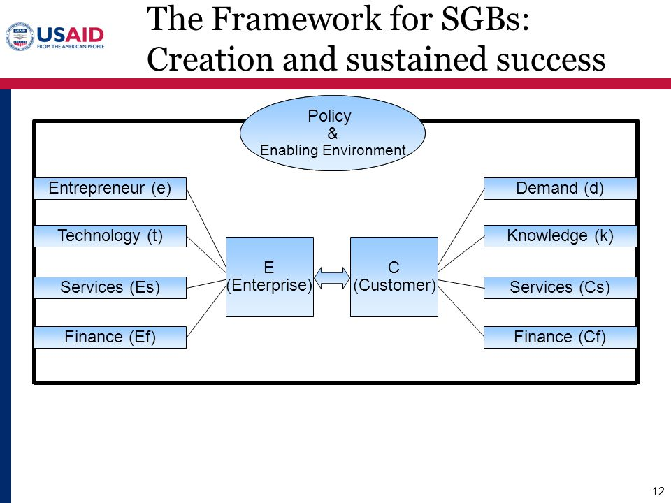 The Framework for SGBs: Creation and sustained success
