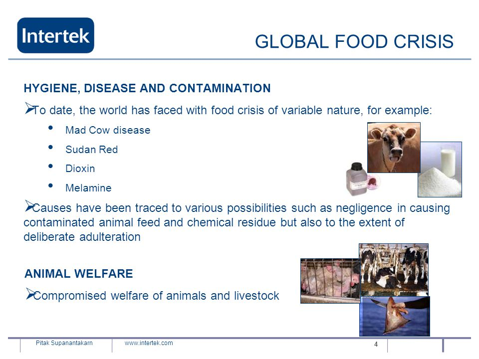 GLOBAL FOOD CRISIS HYGIENE, DISEASE AND CONTAMINATION