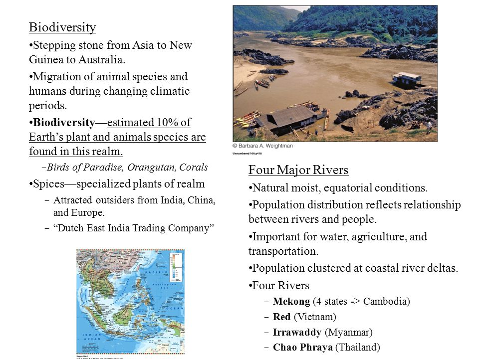 Biodiversity Four Major Rivers