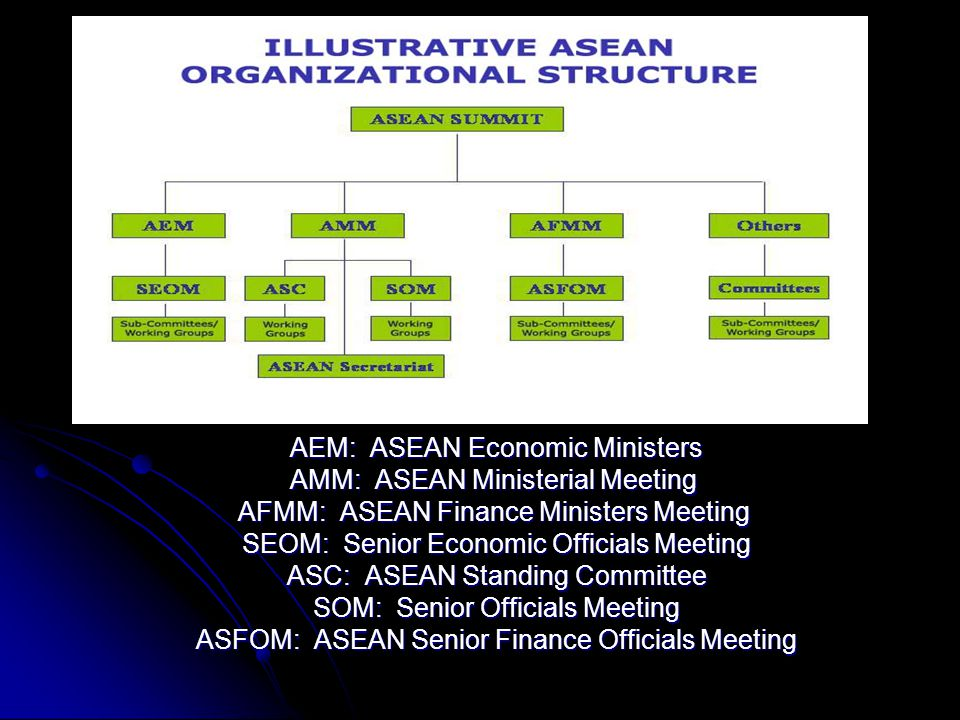 AEM: ASEAN Economic Ministers AMM: ASEAN Ministerial Meeting