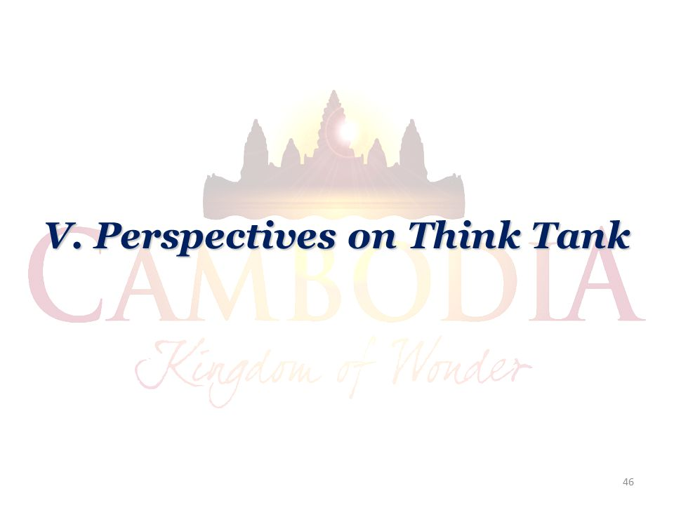 V. Perspectives on Think Tank