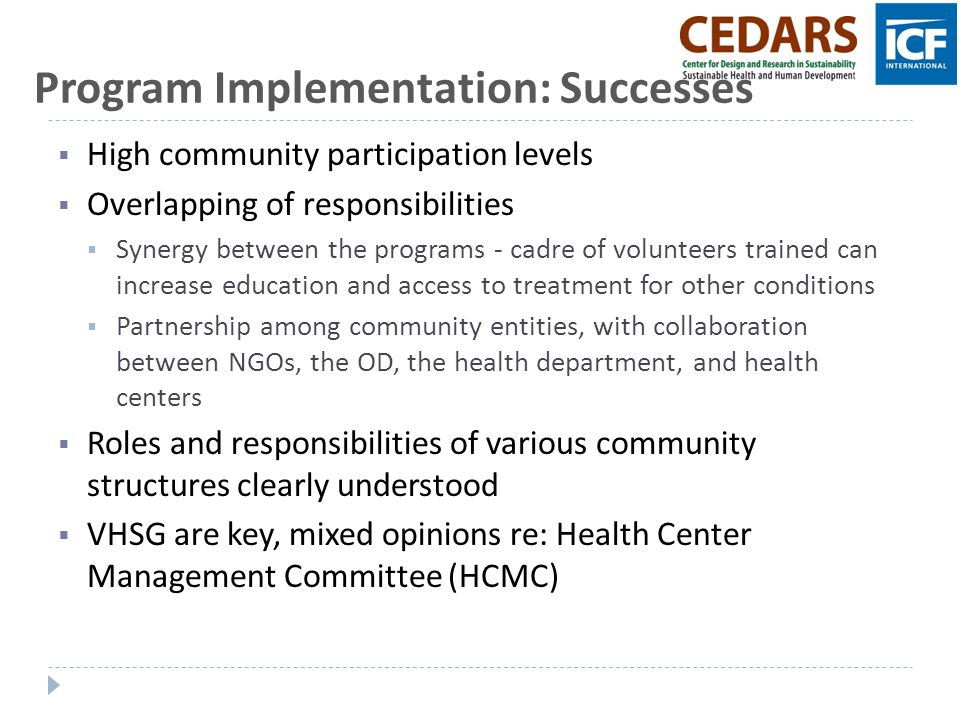 Program Implementation: Successes