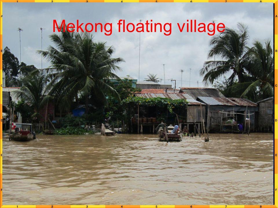 Mekong floating village
