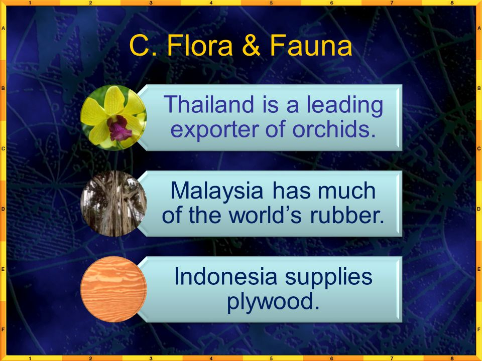 C. Flora & Fauna Thailand is a leading exporter of orchids.