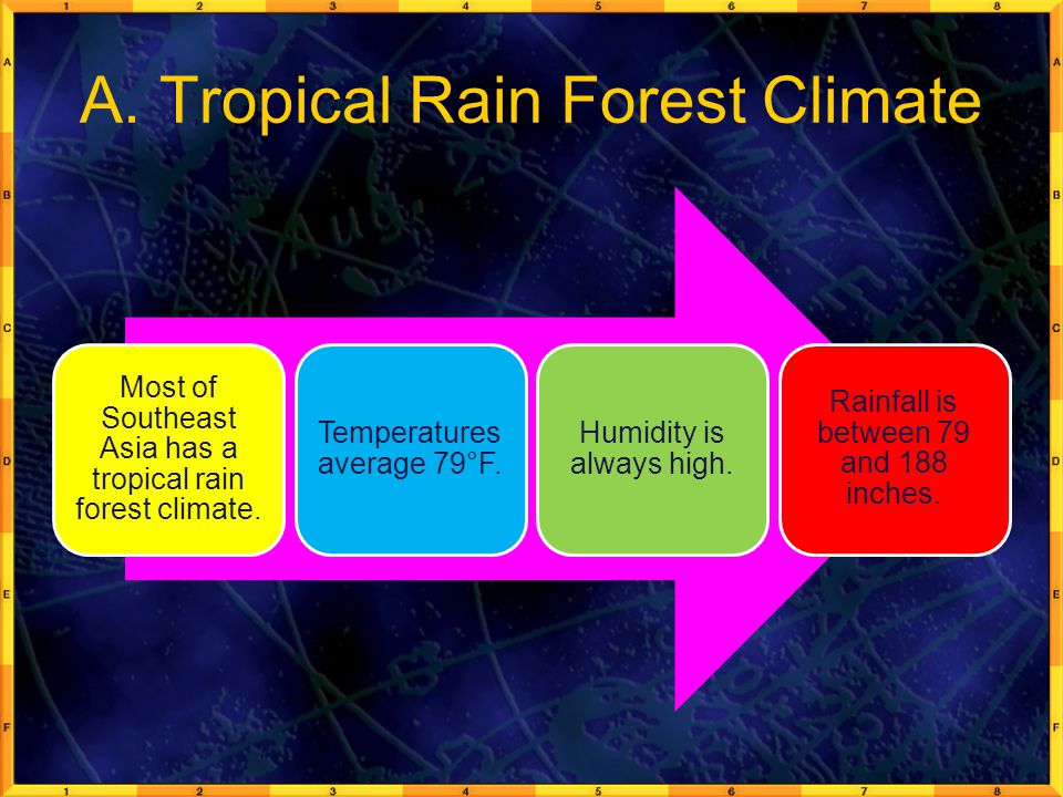 A. Tropical Rain Forest Climate