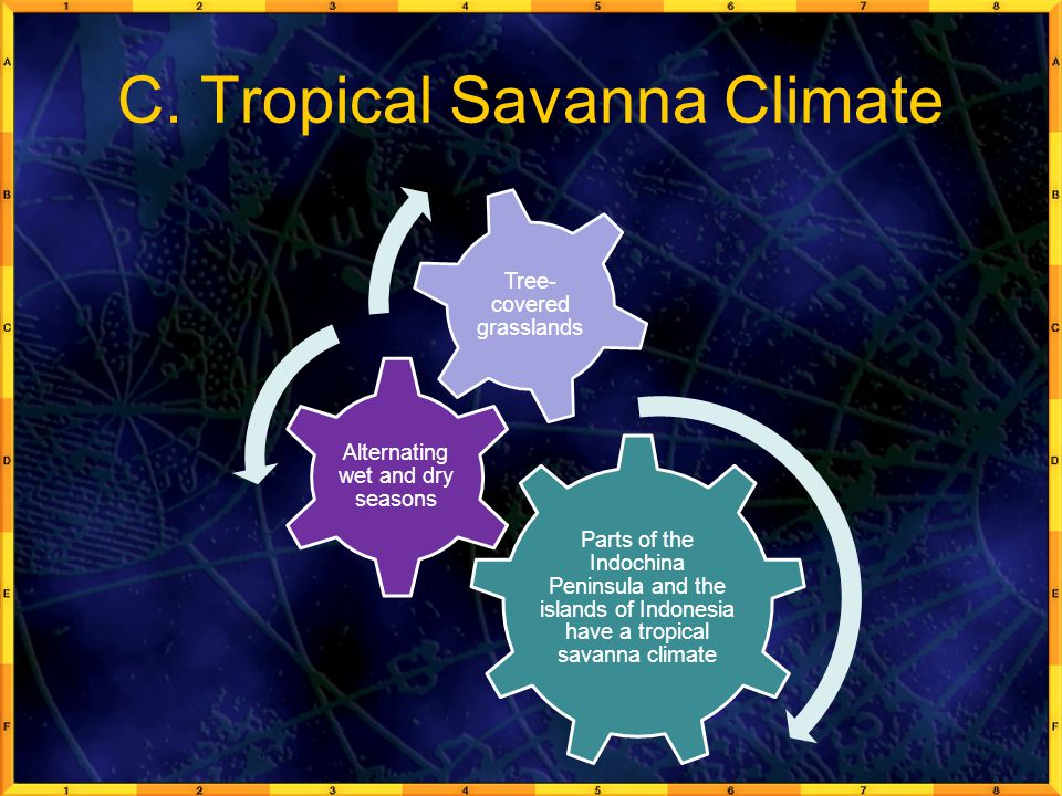 C. Tropical Savanna Climate