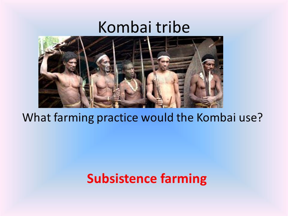 Kombai tribe Subsistence farming