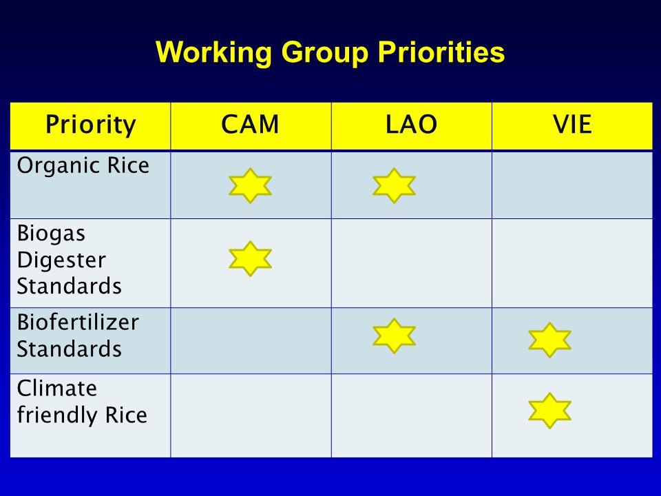 Working Group Priorities