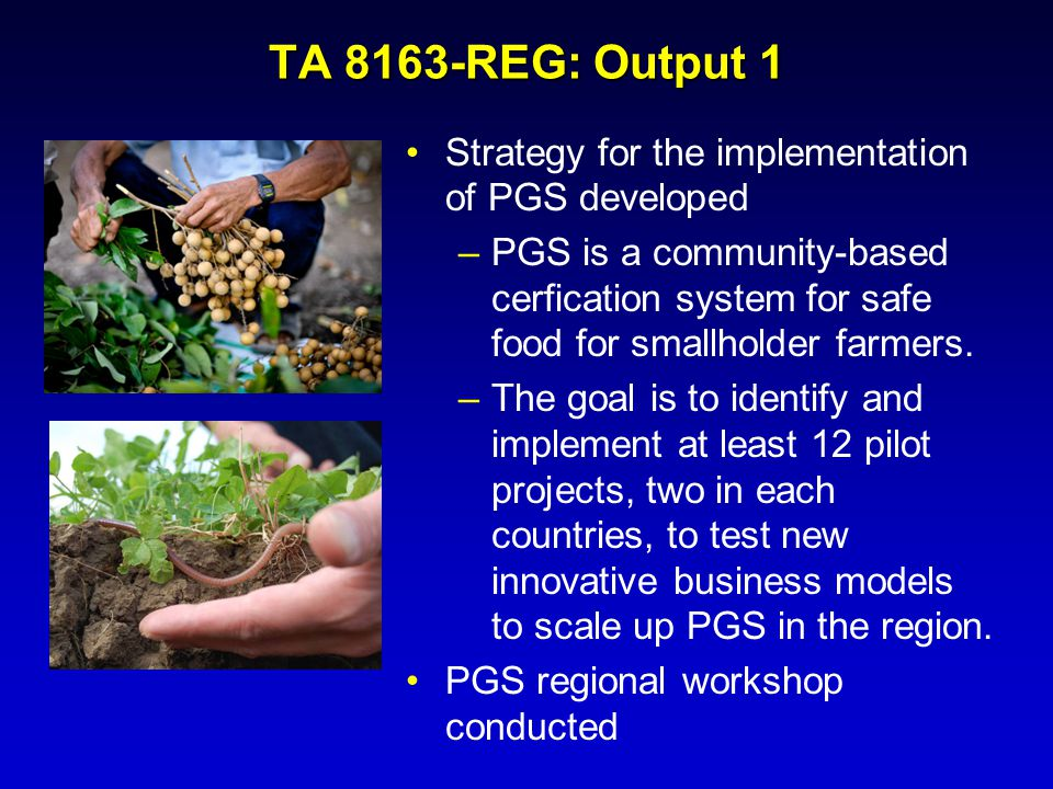 TA 8163-REG: Output 1 Strategy for the implementation of PGS developed