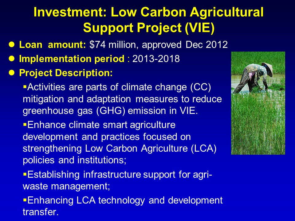 Investment: Low Carbon Agricultural Support Project (VIE)