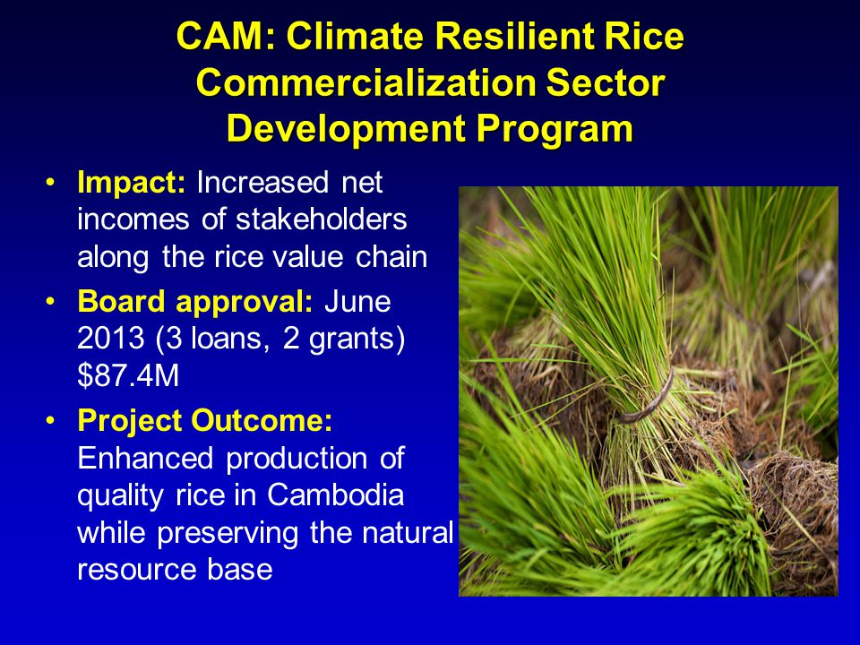 CAM: Climate Resilient Rice Commercialization Sector Development Program