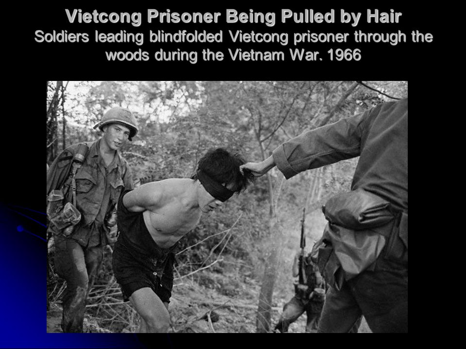 Vietcong Prisoner Being Pulled by Hair Soldiers leading blindfolded Vietcong prisoner through the woods during the Vietnam War.