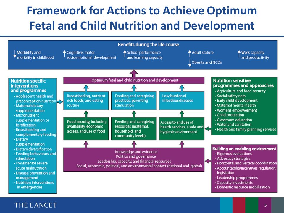Framework for Actions to Achieve Optimum Fetal and Child Nutrition and Development
