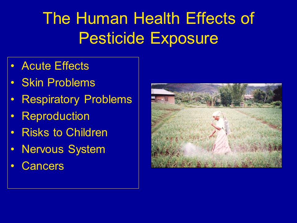 pesticides and effects What are pesticides oehha performs a variety of activities related to the protection of human health from toxic effects of pesticides:.