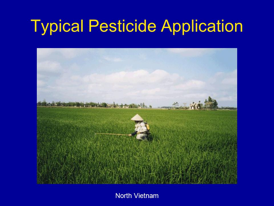 Typical Pesticide Application