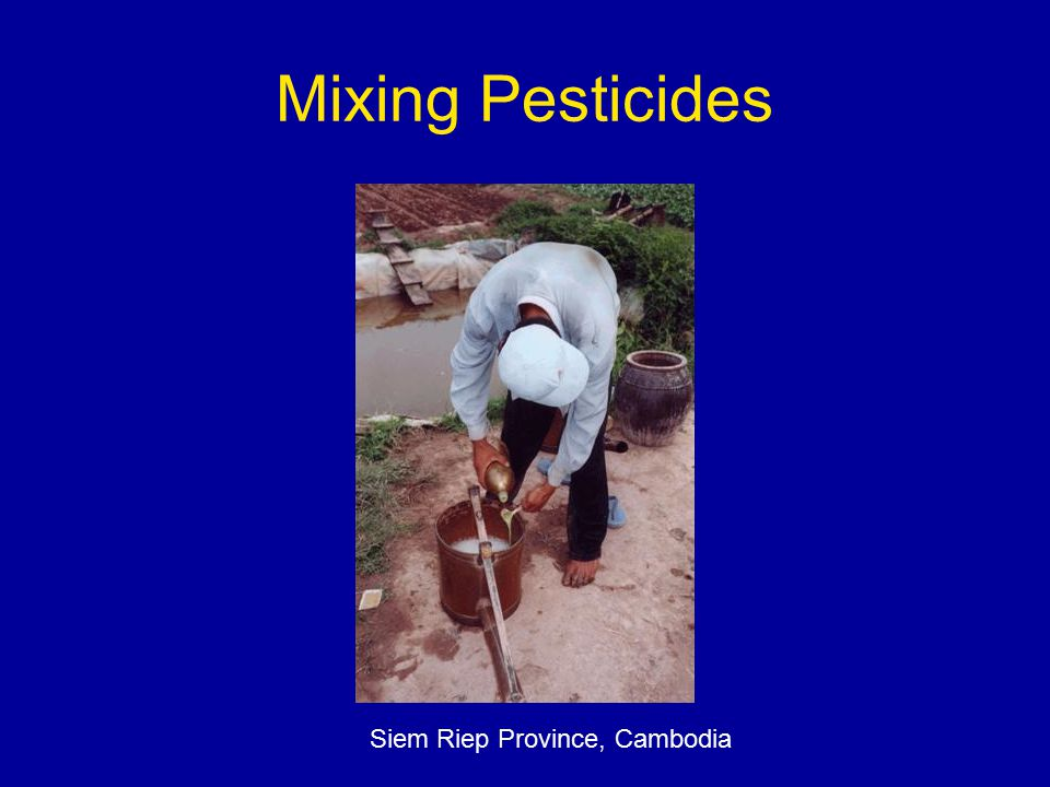 Mixing Pesticides Siem Riep Province, Cambodia