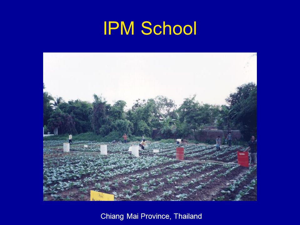 IPM School Chiang Mai Province, Thailand