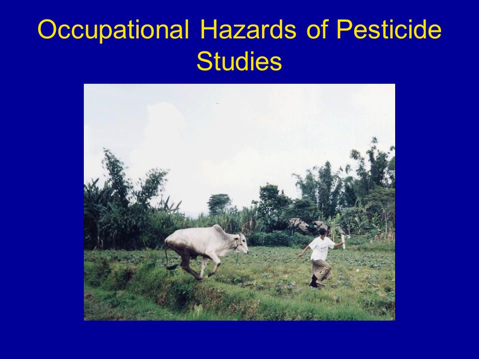 effects of pesticide case study A case study of kerala indira devi p  and human health effects is evident in many countries where commercial agriculture is widespread pesticide use in agriculture and the value of negative externalities are well-  practices of pesticides in agriculture.