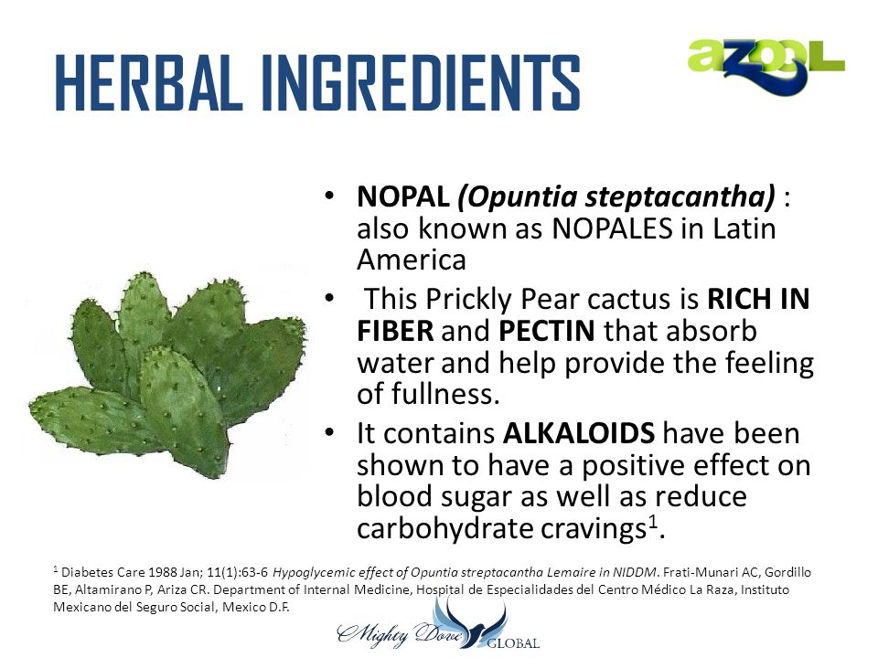 HERBAL INGREDIENTS NOPAL (Opuntia steptacantha) : also known as NOPALES in Latin America.