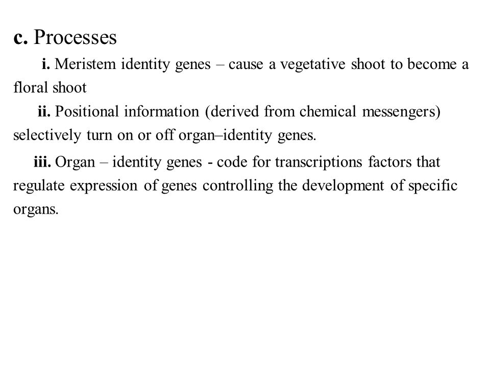 c. Processes i. Meristem identity genes – cause a vegetative shoot to become a. floral shoot.