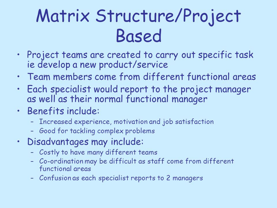 Matrix Structure/Project Based