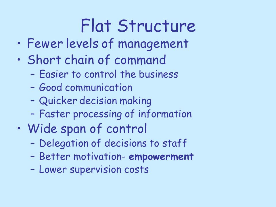 Flat Structure Fewer levels of management Short chain of command