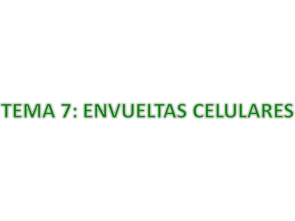 TEMA 7: ENVUELTAS CELULARES