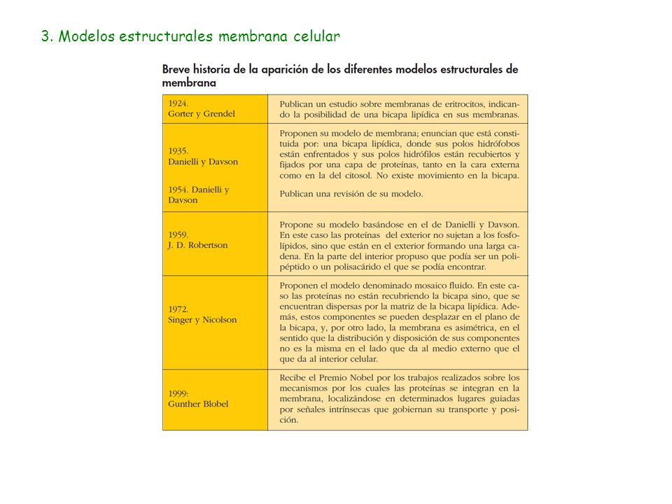 3. Modelos estructurales membrana celular