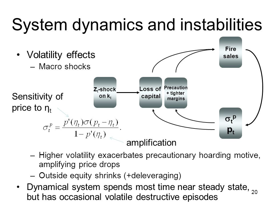System dynamics and instabilities