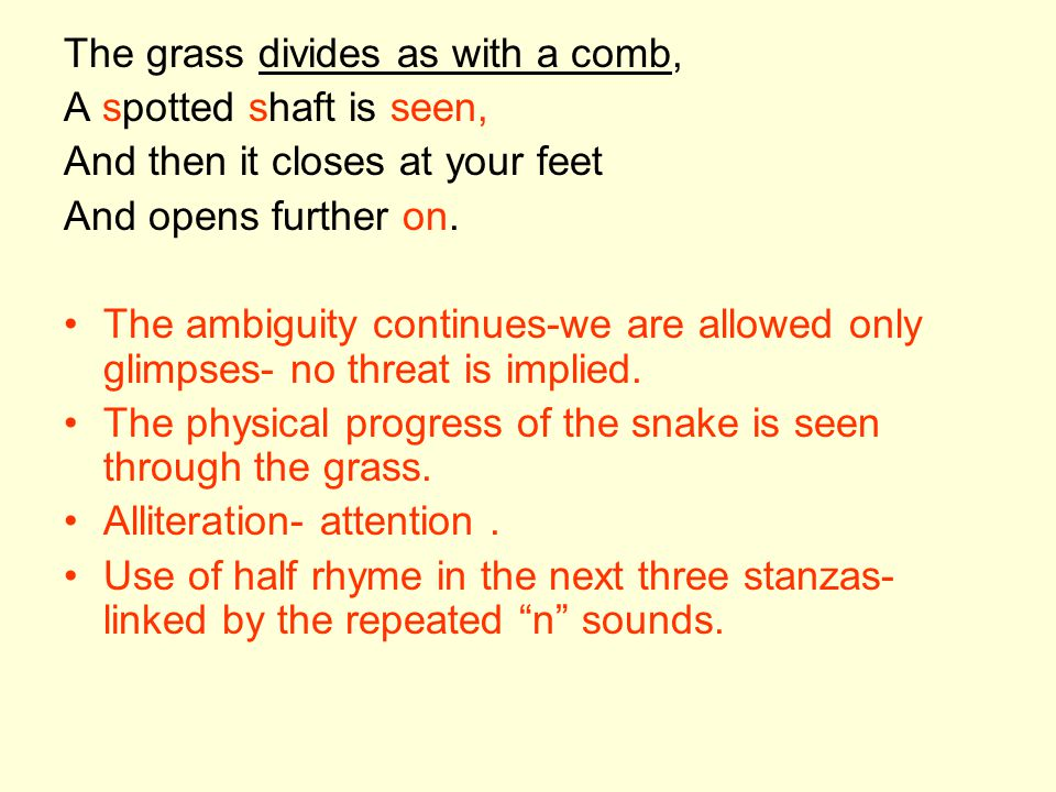 The grass divides as with a comb,