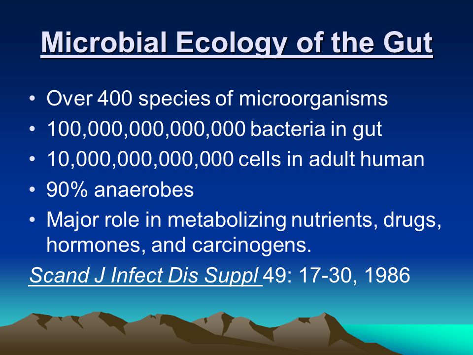 Microbial Ecology of the Gut