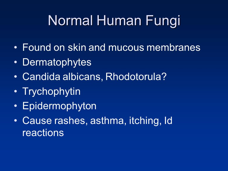 Normal Human Fungi Found on skin and mucous membranes Dermatophytes