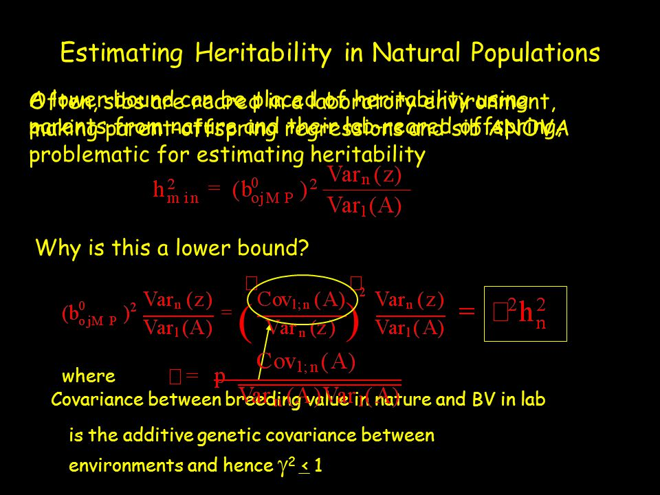 Estimating Heritability in Natural Populations