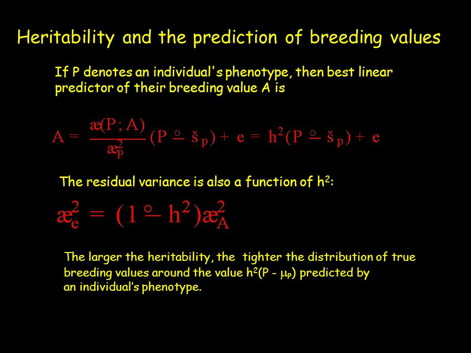 Heritability and the prediction of breeding values