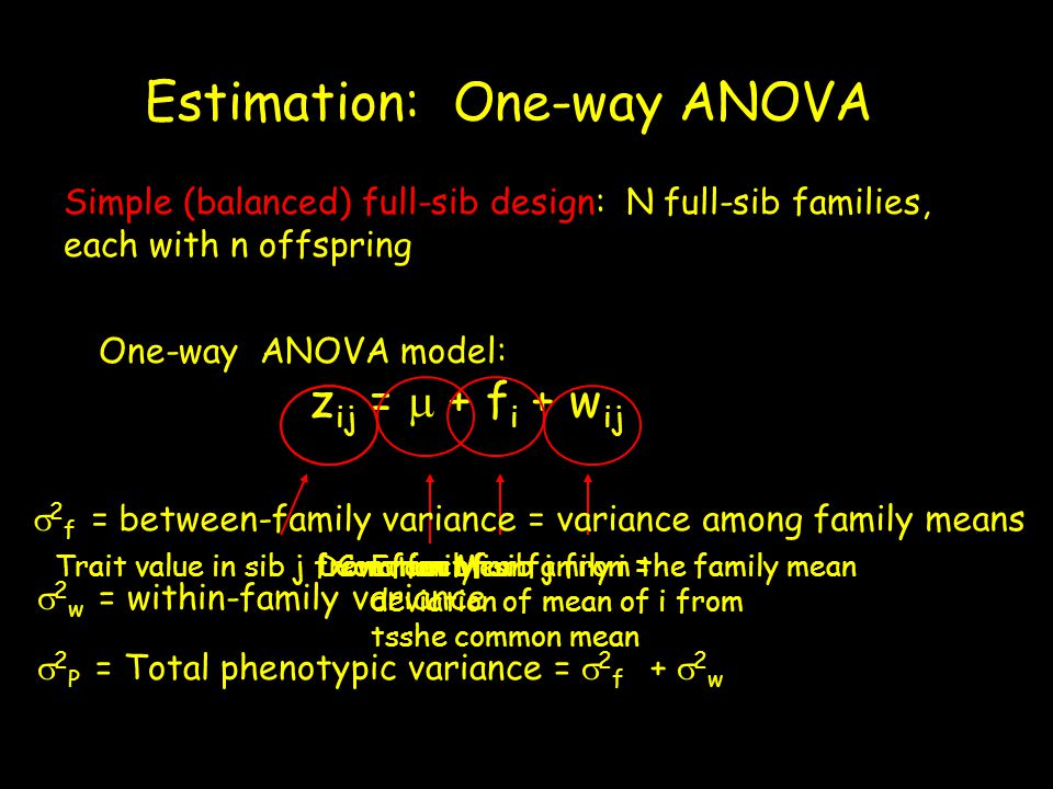 Estimation: One-way ANOVA