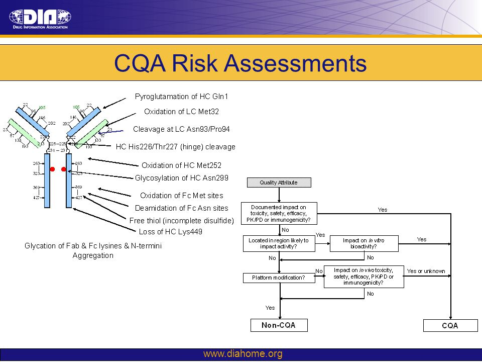 CQA Risk Assessments